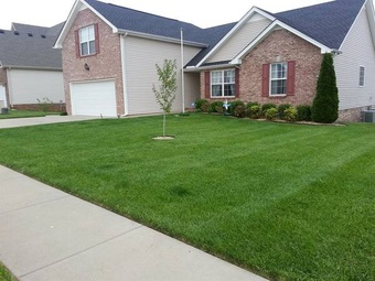 Order Lawn Care in Missouri City, TX, 77489