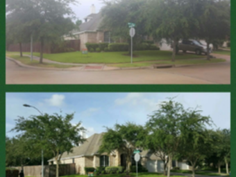 Order Lawn Care in Houston, TX, 77083