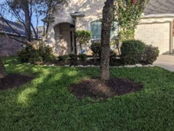 Order Lawn Care in Houston, TX, 77007