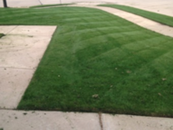 Order Lawn Care in Denton , TX, 76208