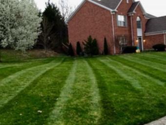 Order Lawn Care in Mt.Juliet , TN, 37122