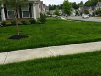 Order Lawn Care in Charlotte, NC, 28216