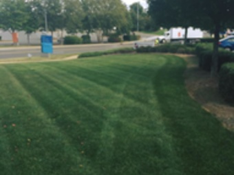 Order Lawn Care in Charlotte, NC, 28226