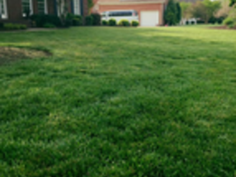 Order Lawn Care in Milton, TN, 37118