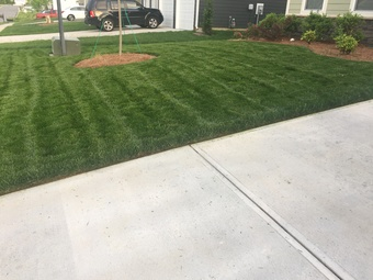 Order Lawn Care in Minthill , NC, 28215