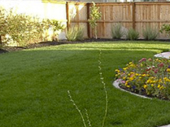 Order Lawn Care in College Park , GA, 30337