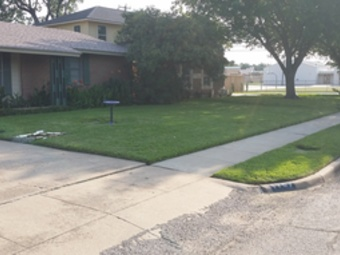 Order Lawn Care in Irving, TX, 75060