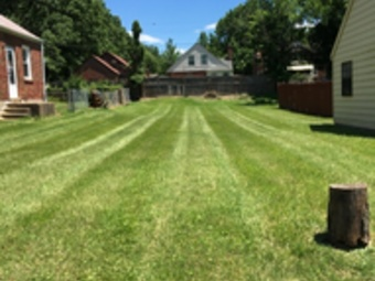 Order Lawn Care in Saint Louis, MO, 63136
