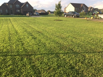 Order Lawn Care in Clarksville, TN, 37040