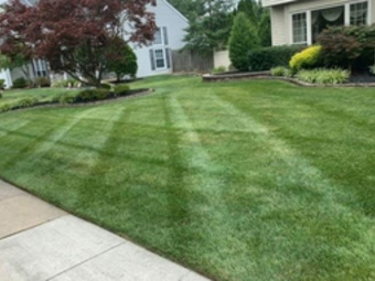 Order Lawn Care in Flowery Branch, GA, 30542