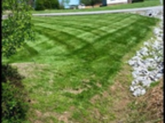 Order Lawn Care in Clarksville , TN, 37040