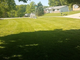 Order Lawn Care in Saint Louis, MO, 63129