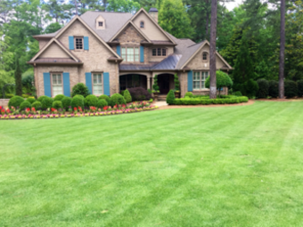 Order Lawn Care in Tampa, FL, 33626