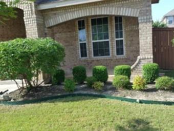 Order Lawn Care in San Antonio, TX, 78227