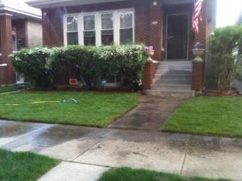 Order Lawn Care in Chicago , IL, 60619