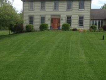 Order Lawn Care in Oswego, IL, 60543