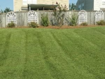 Order Lawn Care in Gastonia, NC, 28054