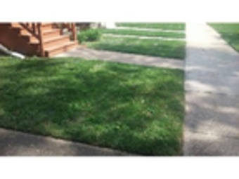 Order Lawn Care in Chicago, IL, 60618