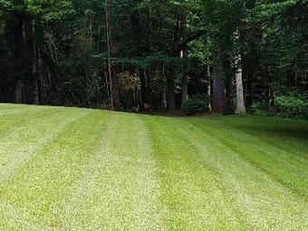 Order Lawn Care in Forsyth, GA, 31029