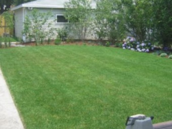 Order Lawn Care in Schamburg, IL, 60194