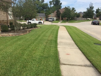 Order Lawn Care in Willis, TX, 77385