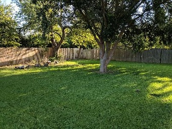 Order Lawn Care in Denton, TX, 76207