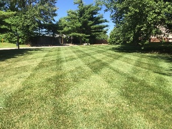 Order Lawn Care in Ofallon , IL, 62269