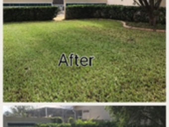 Order Lawn Care in Lakeland , FL, 33811