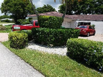 Order Lawn Care in Fort Lauderdale, FL, 33302