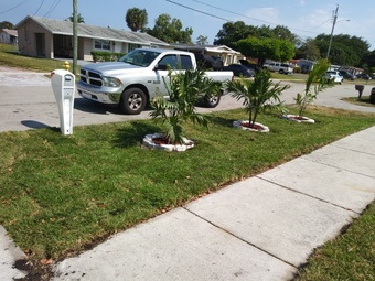 Order Lawn Care in North Fort Lauderdale, FL, 33068