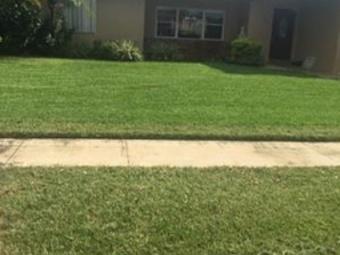 Order Lawn Care in Sunrise, FL, 33313