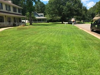Order Lawn Care in Fairburn, GA, 30213