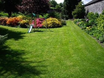 Order Lawn Care in Jacksonville, FL, 32220