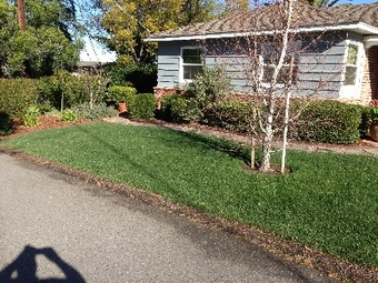 Order Lawn Care in Lakeside, CA, 92040