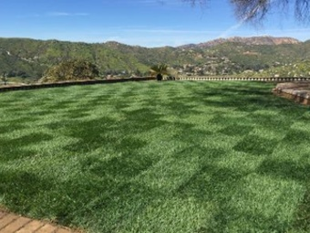 Order Lawn Care in El Cajon, CA, 92021