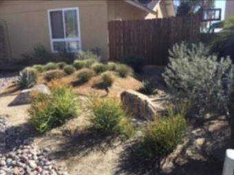 Order Lawn Care in Lemon Grove, CA, 91946