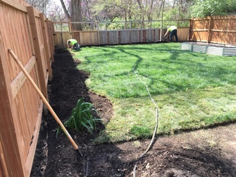Order Lawn Care in St Louis, MO, 63005