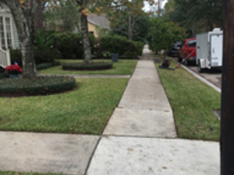 Order Lawn Care in New Orleans , LA, 70122