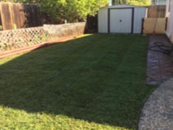 Order Lawn Care in Sunnyvale, CA, 94086