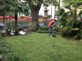 Order Lawn Care in Jefferson, LA, 70121