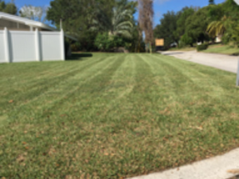 Order Lawn Care in St Petersburg, FL, 33713