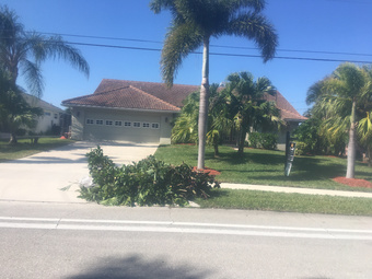 Order Lawn Care in N. Fort Myers, FL, 33918