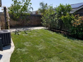 Order Lawn Care in Clovis, CA, 93612