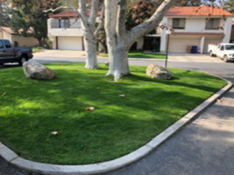 Order Lawn Care in Bakersfield, CA, 93384