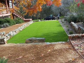 Order Lawn Care in Sac, CA, 95826