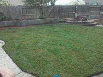Order Lawn Care in Los Banos , CA, 93635