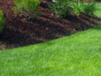 Order Lawn Care in Folsom, CA, 95630