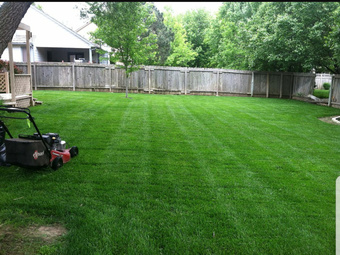 Order Lawn Care in Pittsburgh, PA, 15239