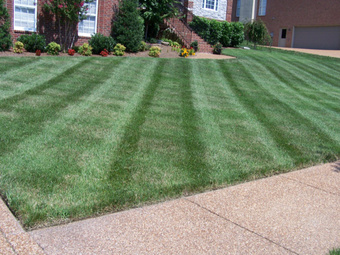 Order Lawn Care in Jefferson , GA, 30549