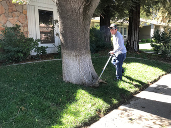 Order Lawn Care in Modesto, CA, 95355